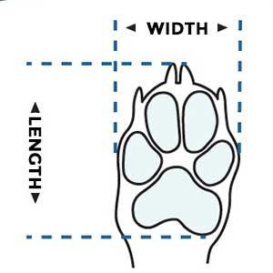 dog boots/shoes sizes & dimensions