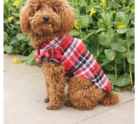 summer fashion dog plaid shirt