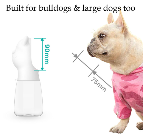 water bottle for small and big dogs
