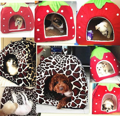 Strawberry or leopard dog house