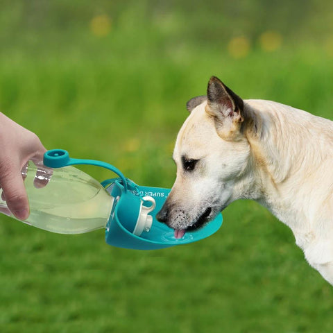 Foldable Dog Water Bottle Feeder