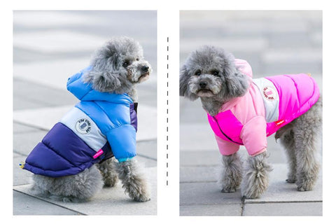 Waterproof Small Dog Hoodie Jacket picture - pupaddict.com