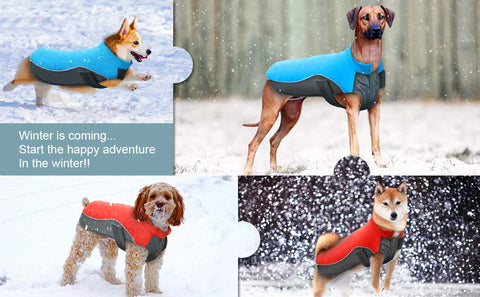 Dog reflective windproof vest jacket