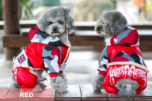 Winter Puppy Coats & Pants (Jumpsuit)