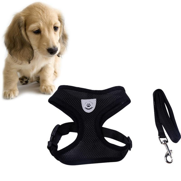 Breathable Vest Harness and Leash | PUP ADDICT