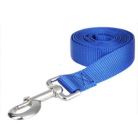 Nylon Lead Walk & Training Dog Leash | PUP ADDICT