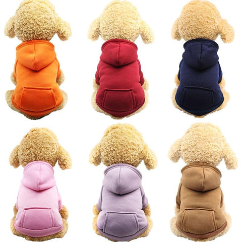 Pretty Warm Hoodie for Small Dogs | PUP ADDICT