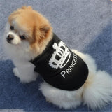 Swag Designer T-shirt for Small Dogs | PUP ADDICT