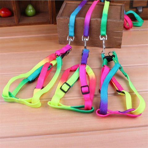 Rainbow Dog Collar Harness Leash Set