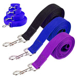 Nylon Walking & Training Dog Leash