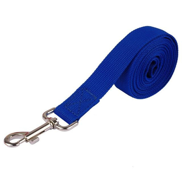 Nylon Walking & Training Dog Leash | PUP ADDICT