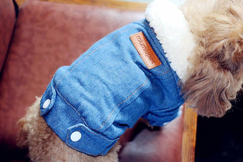 dog jeans jacket for small dogs