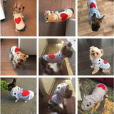 Fashion Cute Cotton Dog Hoodie Sweater | PUP ADDICT
