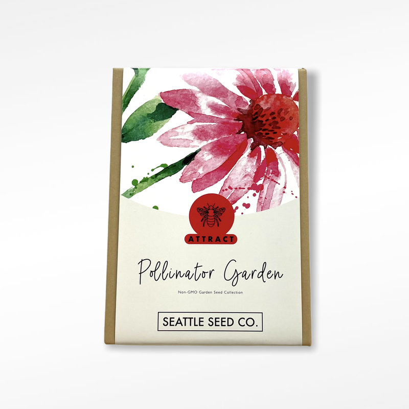 Seed Collection - Pollinator Garden
