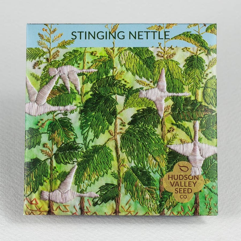 Stinging Nettle Organic Seeds by Hudson Valley Seed Co.