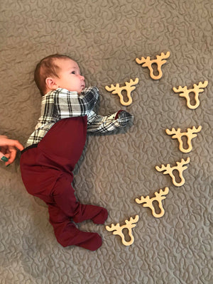Beech Wood Moose Teether
