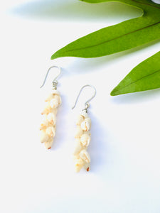 Momi shell earrings