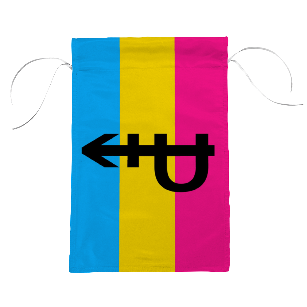 Pansexual Pride Flag with P | The Rainbow's Brand