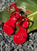 Red girl's jelly sandals, Aria Kid's.