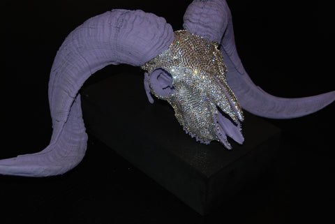 Lavender Ram's Skull - one of a kind $1,280
