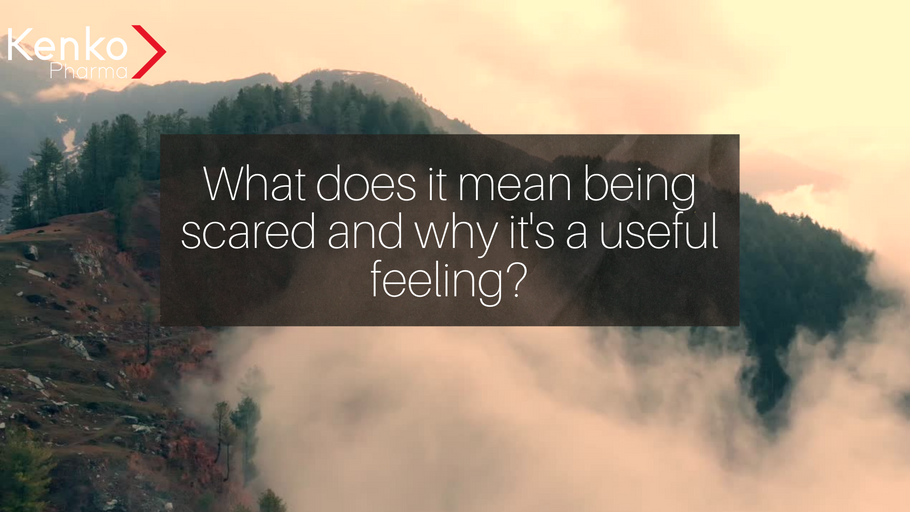 What does it mean being scared and why it's a useful feeling?