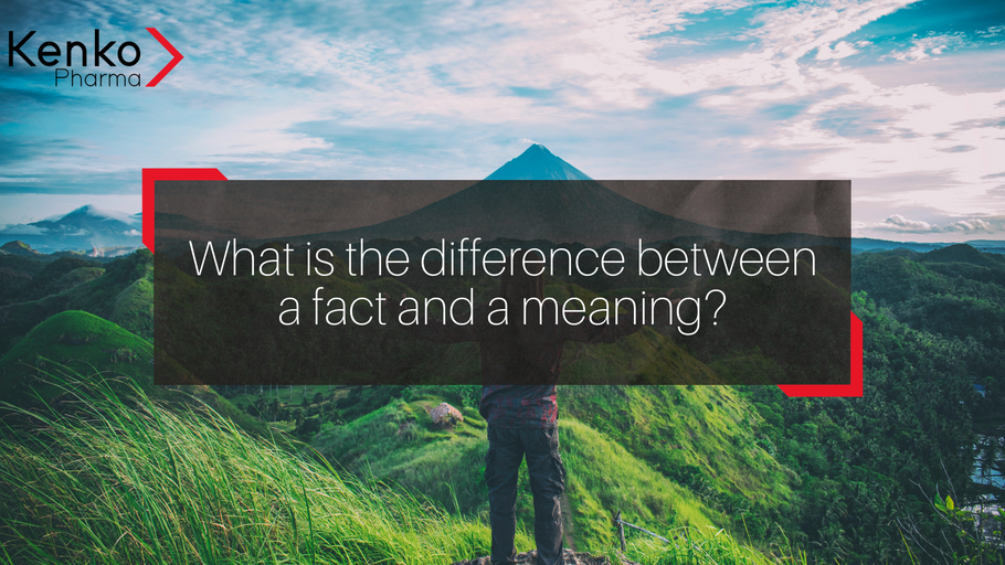 What is the difference between a fact and a meaning?