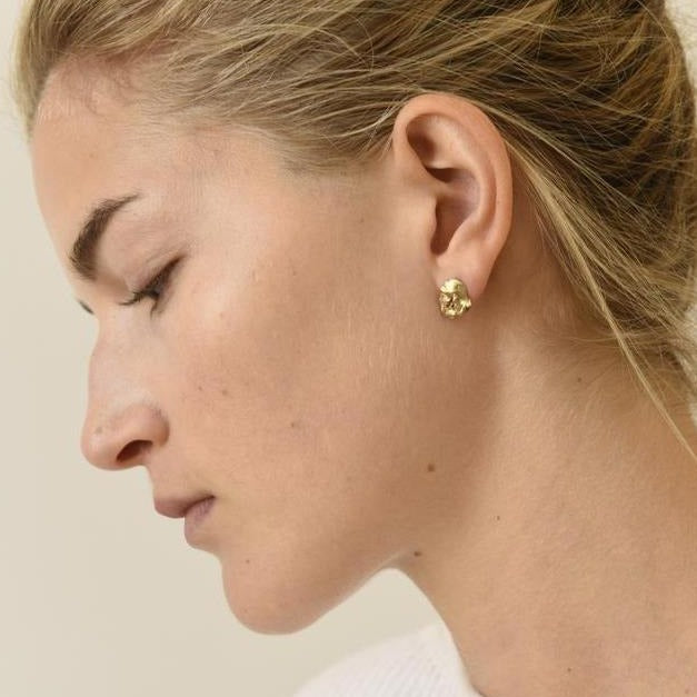 organic, studs, earrings, brass, model.