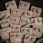 Ringtail Possum Wooden Stud Earrings - Wood With Words