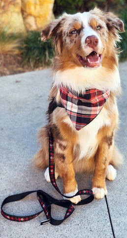 Westfalia Plaid Bandana