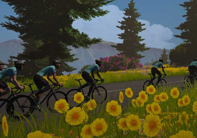 Virtual Tour de France - Zwift