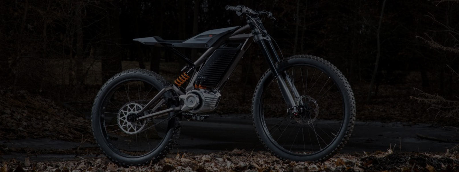 First Look at Harley-Davidson's New Electric Bikes
