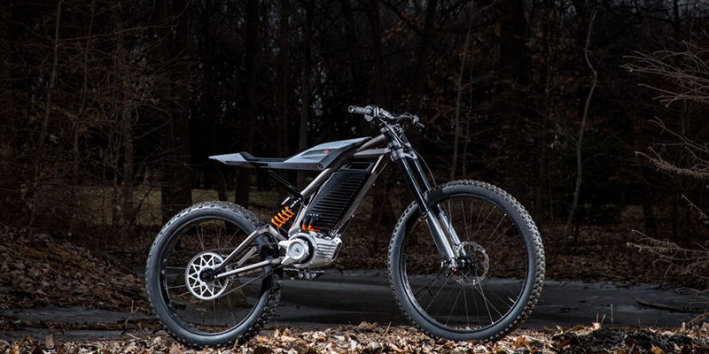 Harley-Davidson New Electric Mountain Bike Concept Unleashed