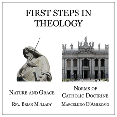 Bundle - First Steps in Theology