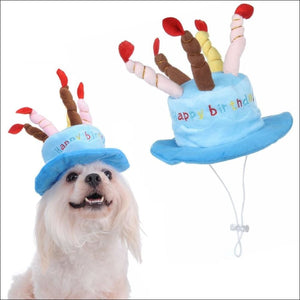 Pet Birthday Cake With Candles Hat