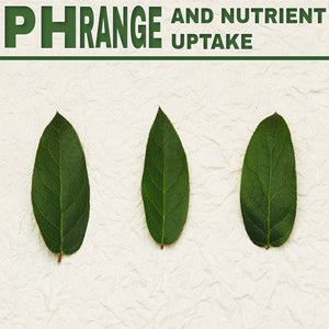 PH Range and Nutrient Uptake