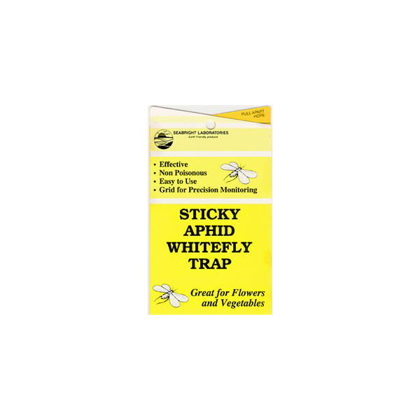 Sticky Traps Aphid