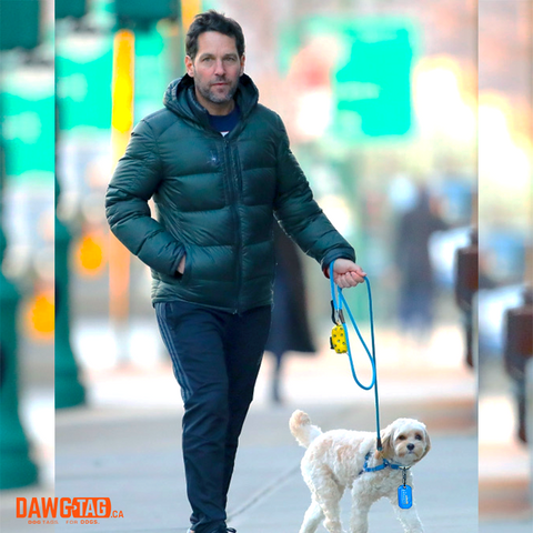 Paul Rudd and his dog wearing a DawgTag