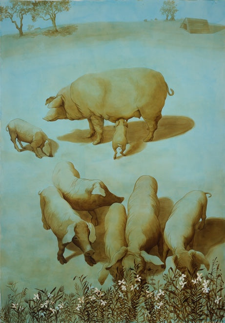 Pigs of Evoramonte