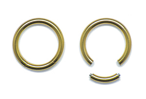 Segment Ring - Gold PVD