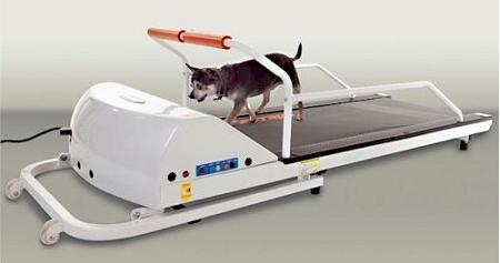 PetRun PR710 Dog Treadmill