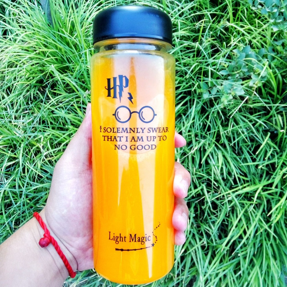 Limited Edition HP Water Bottle (500ml )