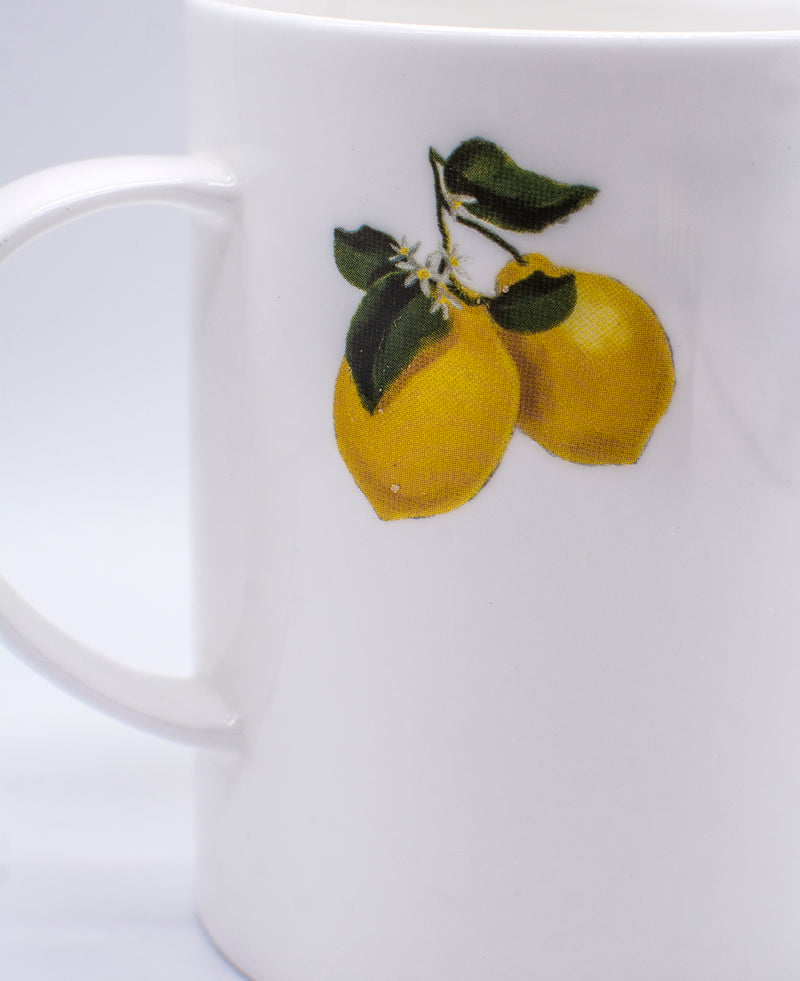 MUG (SET OF 2) - Lemon-Casacarta-CASACARTA