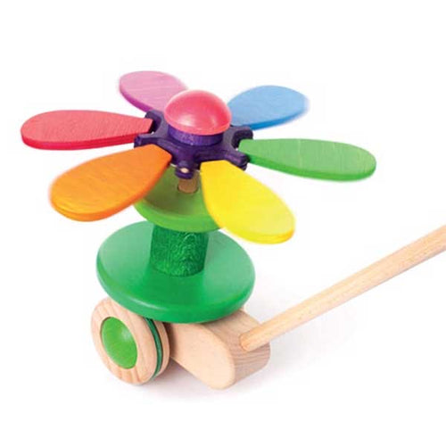 Rainbow Flower Push Toy