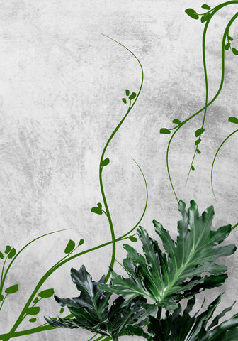 Floral Growing Weeds Vinyl Wall Decal Sticker.  #372
