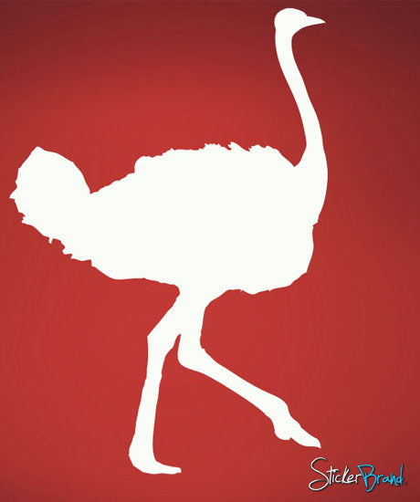 Vinyl Wall Decal Sticker Ostrich # 504