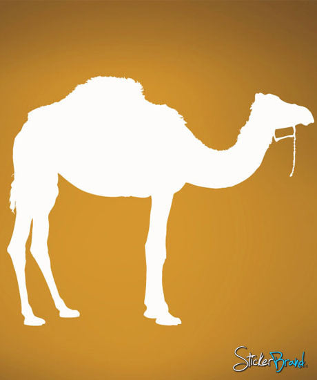 Vinyl Wall Decal Sticker Camel # 506
