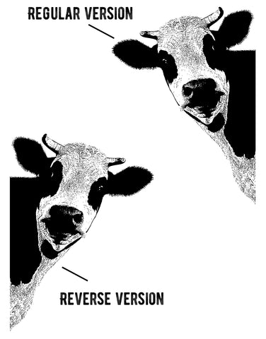 Peeking Cow Wall Decal Sticker for your Kitchen. #5476