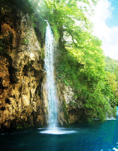 Waterfall in Deep Forest Wall Mural #6023