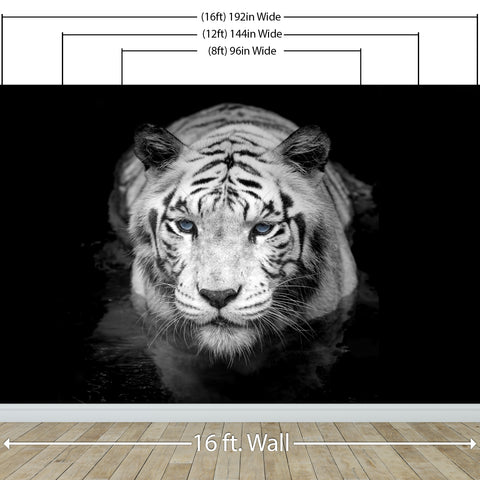 Tiger Stare Down Large Mural (Black and White) #6045