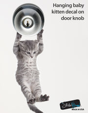 Cute baby kitten hanging on door decal sticker #6067